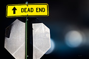 Road Sign Prints - Dead End Print by Bob Orsillo