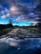 Puddle Prints - Dead End Print by Phil Koch