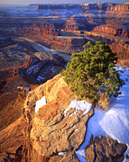 Point State Park Prints - Dead Horse Point Print by Ray Mathis