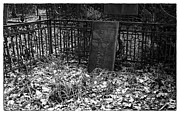 Head Stone Prints - Dead Leaves Print by John Rizzuto