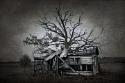 Haunted House Metal Prints - Dead Place Metal Print by Svetlana Sewell