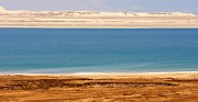 David Birchall - Dead Sea Shoreline in...