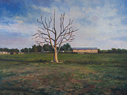 David P Zippi - Dead Tree at Spring...