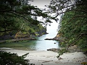 Neurotic Images Photography Prints - Deadmans Cove Print by Chalet Roome-Rigdon