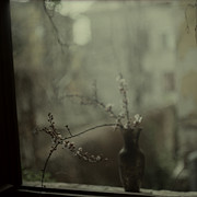 Katia Chausheva - Dear April