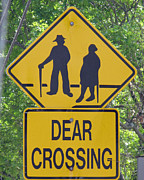 Crosswalk Framed Prints - Dear Crossing Framed Print by Barbara McDevitt