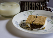 Mallow Photos - Death By Chocolate by Heather Applegate