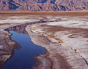 Tom Daniel - Death Valley Salt Stream...