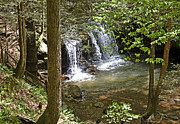 Mountain Fork Creek Prints - Debord Falls Print by Paul Mashburn