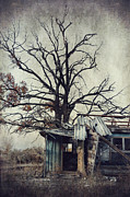 Creepy Digital Art Prints - Decay Barn Print by Svetlana Sewell
