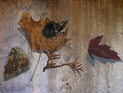 Decay Digital Art Metal Prints - Decayed Leaf Still Life on Concrete 1 Metal Print by Anita Burgermeister