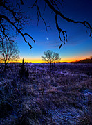 Geographic Prints - December Blues Print by Phil Koch