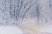 December Riverscape Print by Alan L Graham