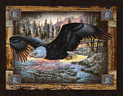 Bald Eagle Painting Framed Prints - Deco Eagle Framed Print by JQ Licensing