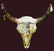 Collectibles Mixed Media - Decorated Buffalo Skull by Native Arts Trading