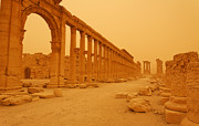 Palmyra Photos - Decumanus the colonnaded street at Palmyra Syria in the light after a sandstorm by Robert Preston