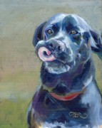Black Lab Prints - Dee Lish Print by Kimberly Santini