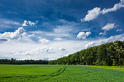 Fresh Green Art - Deep blue fresh green and white clouds - lovely summer landscape by Matthias Hauser