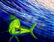 Gamefish Originals - Deep Blue Mahi  by Marty  Calabrese