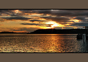 South Puget Sound Prints - Deep Gold Print by Chris Anderson