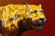 Cast Sculpture Framed Prints - Deep Gold Tiger on Red Framed Print by Linda Phelps
