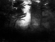 Black And White Digital Art Prints - Deep In The Dark Woods Print by Theresa Tahara