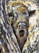 Bison Art - Deep In The Forest by Angel  Tarantella