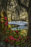 Reflections In River Prints - Deep red Azaleas and white Bridge in Oil Print by Mark Serfass