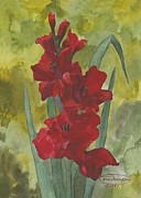 Glads Paintings - Deep Red Gladiolus by Carol Thompson