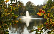 Pond In Park Prints - Deep Run Park- Henrico Print by Rajendra Shrestha