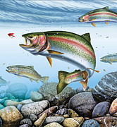 Jon Q Wright Framed Prints - Deep Stream Rainbow Trout Framed Print by Jon Q Wright