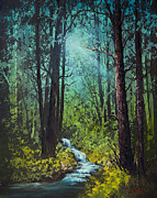 Deep Woods Stream Print by C Steele