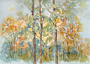 Birch Trees Paintings - Deep Woods Waskesiu by Pat Katz
