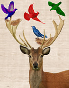 Animal Digital Art Prints - Deer and birds nests Print by Kelly McLaughlan