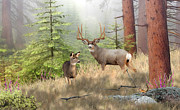 Animals Digital Art - Deer Art - Magical Forest - Fine art Deer Painting by Mule Deer Artist Dale Kunkel