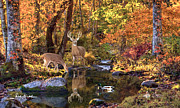 Wildlife Christian Art Prints Prints - Deer Art Paintings - Beside Still Waters - Whitetail Deer Art Print Print by Deer Artist Dale Kunkel