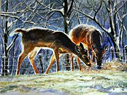 Winter Scene  For Sale Paintings - Deer Feeding in Winter by Maria Balcells