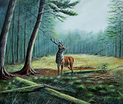 Sanfrancisco Paintings - Deer in a forest glade by Osi