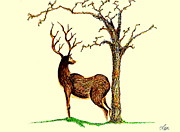 Earth Tone Drawings Posters - Deer Poster by Len YewHeng