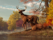 Fall Season Digital Art Framed Prints - Deer on an Autumn Lakeshore  Framed Print by Daniel Eskridge