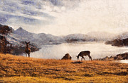 Chimp Prints - Deer on mountain at dusk Print by Pixel Chimp