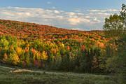 Charles Kozierok - Deerfield Valley Colors