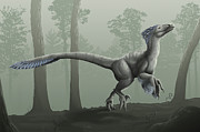 Deinonychus Prints - Deinonychus Antirrhopus In A Misty Print by Emily Willoughby