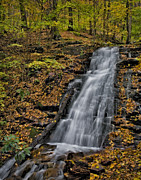 Colors Of Autumn Posters - Delaware Water Gap In The Fall Poster by Susan Candelario