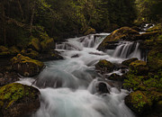 Water Flowing Photo Prints - Delicate and Powerful Print by Mike Reid