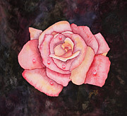 Water Splashes Framed Prints - Delicate Pink Rose with Water Droplets original watercolor painting Framed Print by Georgeta  Blanaru