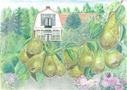 Eve-Ly Villberg - Delicious pears