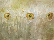 Delightful Daffodils Print by Diane Schuster