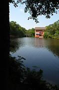 Grist Millpond Photo Prints - Dells Millpond No. 1 Print by Janice Adomeit