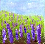 Laurie Morgan - Delphiniums